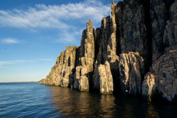 Des falaises abritants des colonie de Guillemots de Brünnich
